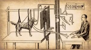 pavlov-experiment